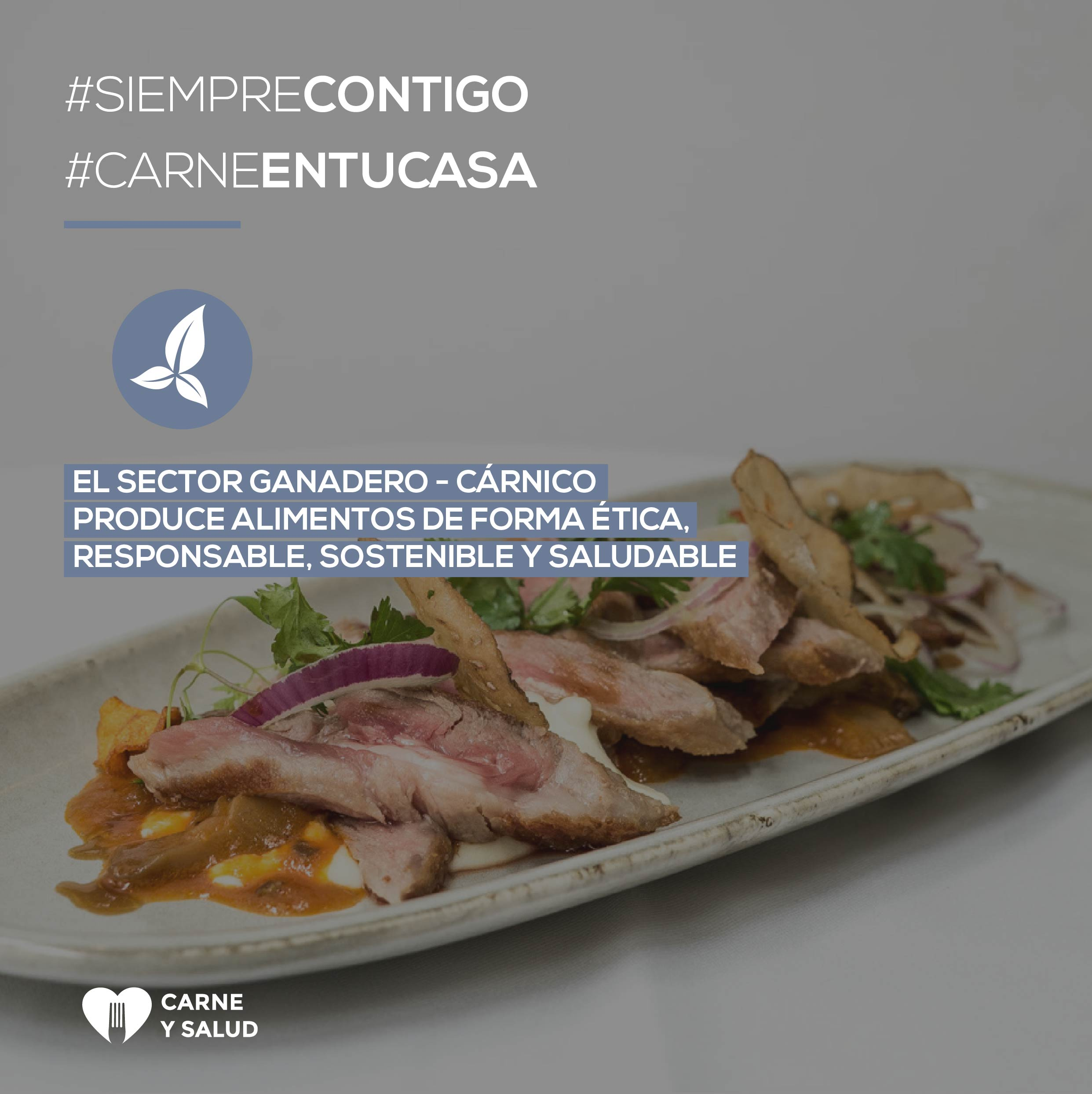 Carne Y Salud. Meat And Processed Meat, Protagonists During Confinement